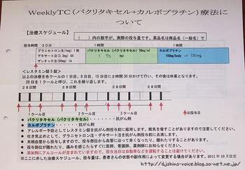 weekly-tc-ryoho.jpg